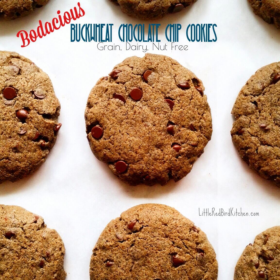 Bodacious Buckwheat Chocolate Chip Cookies – Little Red Bird Kitchen